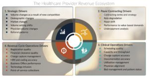 healthcare provider revenue ecosystem